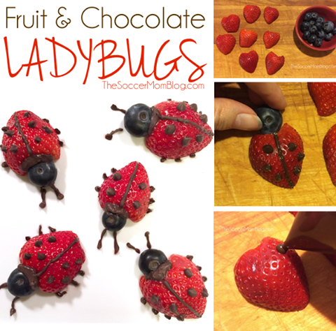 FRUIT & CHOCOLATE  LADYBUGS