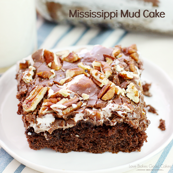 Quick And Easy Mississippi Mud Cake Recipe