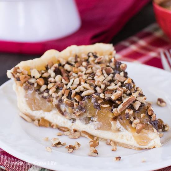 APPLE TURTLE CHEESECAKE