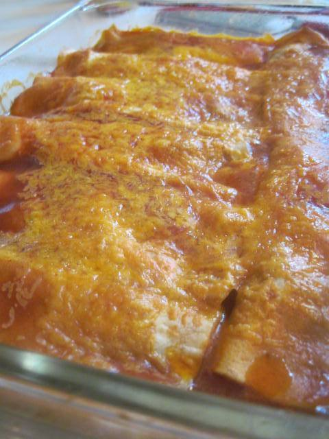 EASY CHEESY BEEFY ENCHILADAS