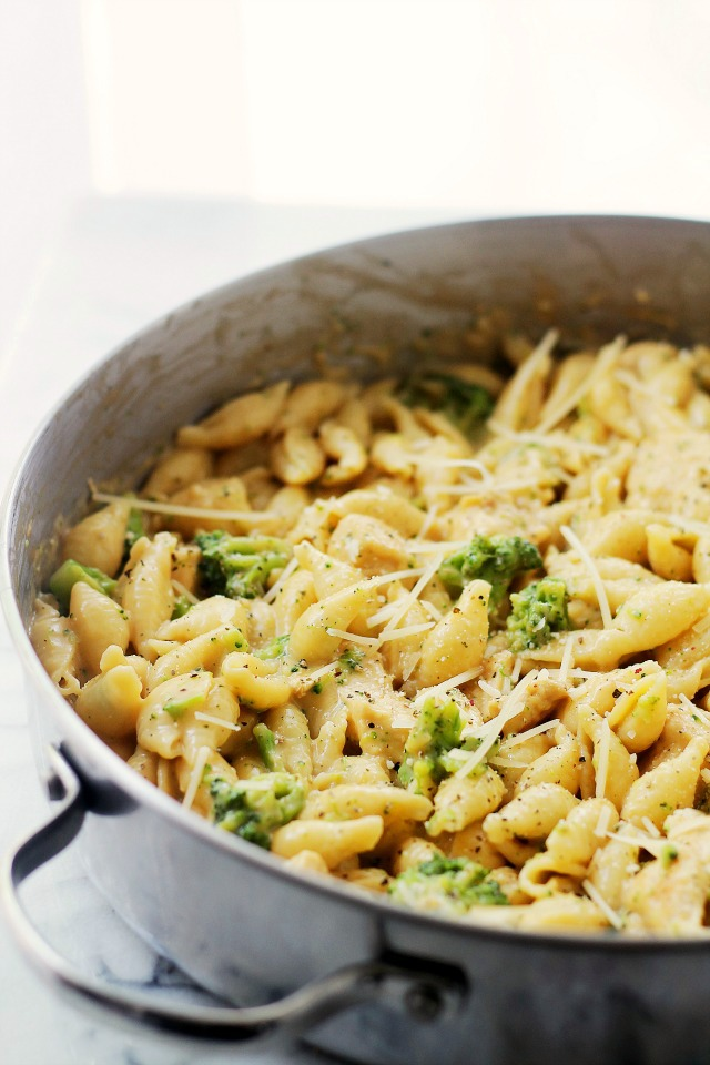 Chicken Broccoli Shells and Cheese