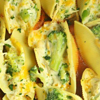Chicken Broccoli Alfredo Stuffed Shells