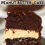 Chocolate peanut butter cake on a white plate