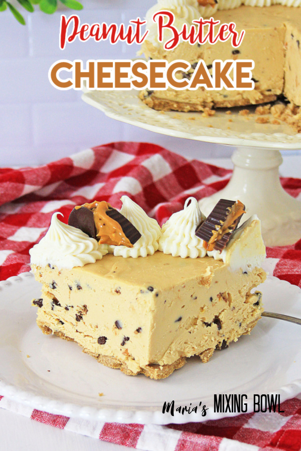 Creamy cheesecake on white plate on white and red plaid napkin with cake stand and cake on top