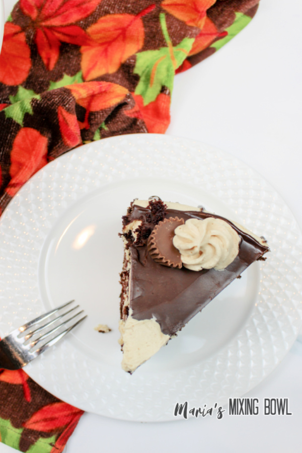 Overhead shot of chocolate cake with peanut butter frosting on white plate