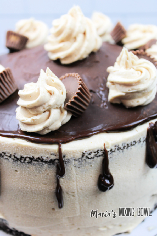 Closeup shot of unsliced cake